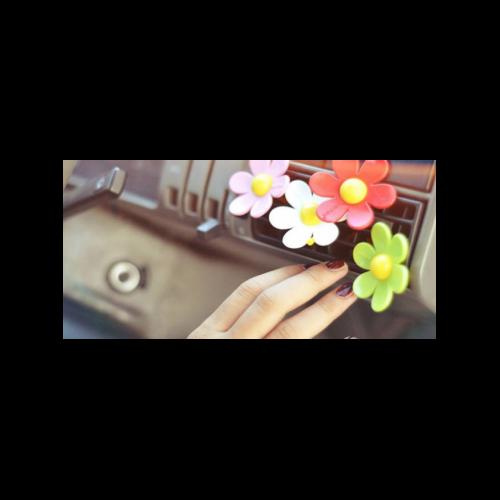 HIPPY PINK FLOWER POWER 12 PZ / ароматизатор хиппи розовый, цветочный плен / розовый пряный